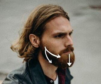 direction for beard brushing