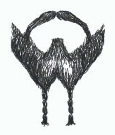 french fork braided goatee drawing