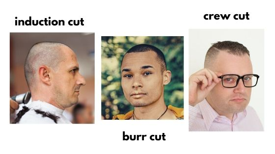 Comparison of an induction cut, burr cut and crew cut