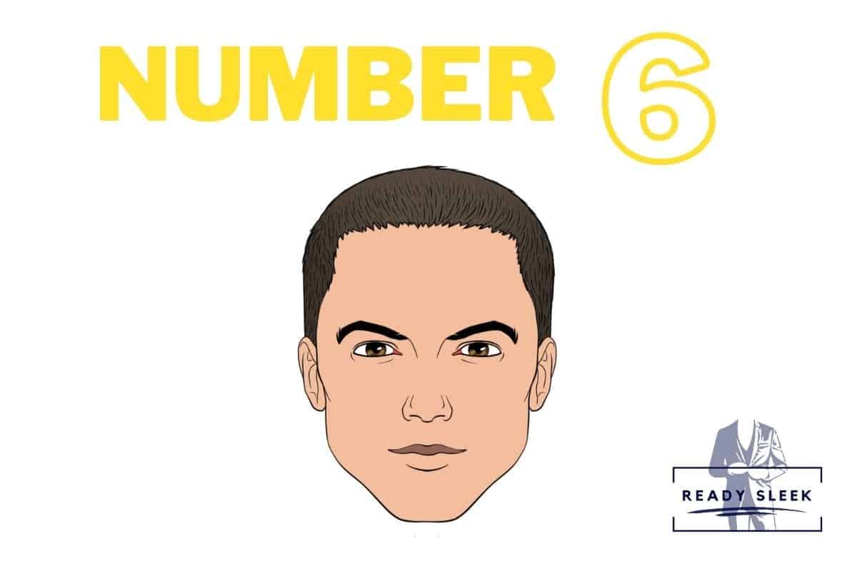 illustration of a #6 buzz cut