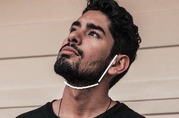 beard neckline definition